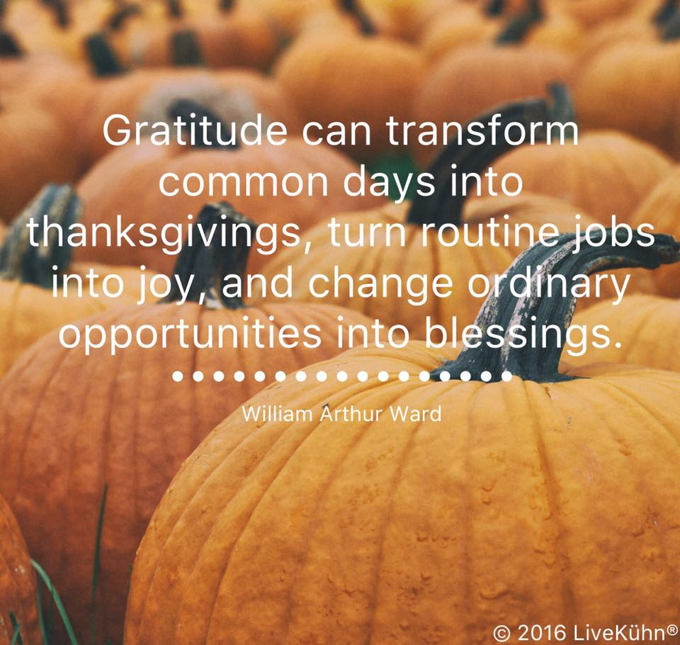 Gratitude can transform common days into thanksgivings, turn routine jobs into joy, and change ordinary opportunities into blessings.  -William Arthur Ward